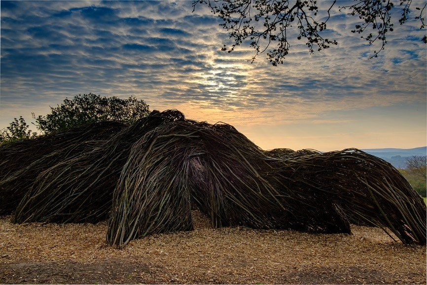 a maze made of willow with the sun setting behind it